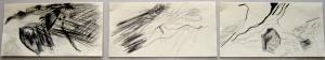 01Triptych.73x25cm framed.Pencil on paper.April 2013